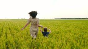 Una madre joven y su funcionamiento del niño a través de un campo del trigo, llevando a cabo las manos El concepto de una familia almacen de video