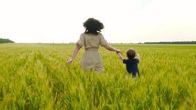 Una madre joven y su niño están corriendo a través de un campo del trigo verde y amarillo, llevando a cabo las manos, en la cámar metrajes