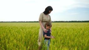 Una madre joven y su niño se están colocando en un campo de trigo, tocando sus oídos con su mano metrajes