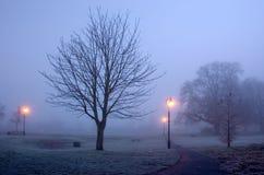 Una madrugada del frío y de Frosty Foggy en el parque de Diss Foto de archivo