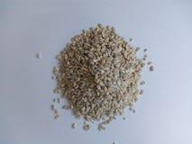 Una manciata di grani dell'orzo su un fondo bianco Fotografie Stock Libere da Diritti