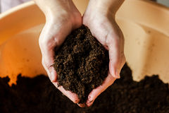 Una manciata di suolo in mani femminili Fotografia Stock Libera da Diritti