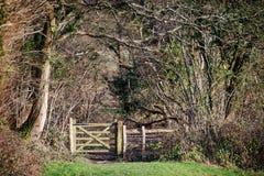 Una manera pública de la puerta del footback de los rmablers al bosque Fotografía de archivo