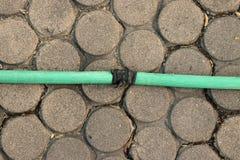 Una manguera verde que miente en la tierra herbosa, un cierre encima de la imagen de una manguera de jardín, tubo de goma para la imagenes de archivo