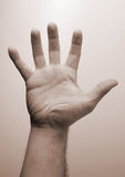 Una mano Imagen de archivo