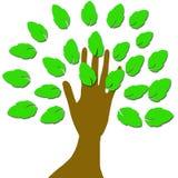 Una mano con las hojas ilustración del vector