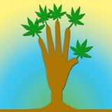 Una mano con las hojas libre illustration