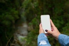 Una mano del ` s de la mujer con una manicura toma una foto del paisaje del bosque uso como plantilla para su foto fotos de archivo libres de regalías