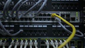 Una mano del ` s del ingeniero de las TIC enchufa el cable de la red al interruptor de red almacen de metraje de vídeo