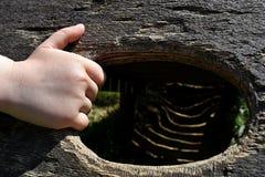 Una mano di 5 anni del ragazzo del bordo della tenuta della palestra di giungla di legno Fotografia Stock Libera da Diritti