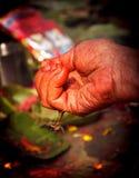 Una mano que adora de Hindus Imagen de archivo libre de regalías