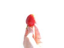 Una mano que sostiene la fresa Fotos de archivo