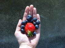 Una mano que sostiene la fresa y los arándanos Imagen de archivo libre de regalías
