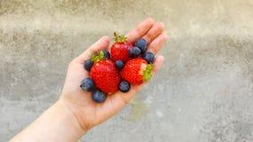 Una mano que sostiene las fresas y los arándanos Imagen de archivo