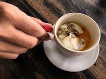 Una mano que sostiene una taza de huevo pasado por agua en la tabla de madera Foto de archivo libre de regalías