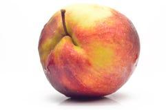 Una manzana fresca grande Imagen de archivo libre de regalías