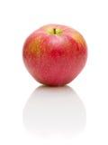 Una manzana roja grande en un fondo blanco Foto de archivo libre de regalías