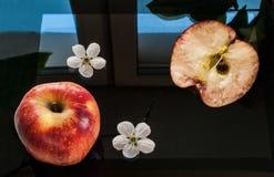 Una manzana roja, una mitad de una manzana y dos flores de la manzana puestas en un negro, cambiado de la pantalla de una tableta Foto de archivo