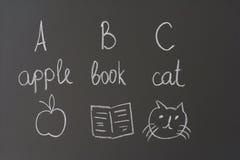 Una manzana, un libro y un gato fotos de archivo