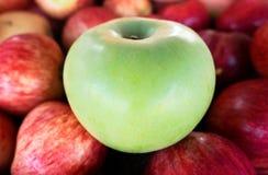 Una manzana verde entre el grupo de muchas manzanas rojas Fotos de archivo