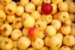 Una manzanas rojas y amarillas en cajas Foto de archivo libre de regalías