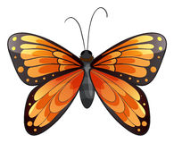 Una mariposa stock de ilustración