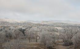 Una mattina di inverno a Lione, Colorado fotografia stock