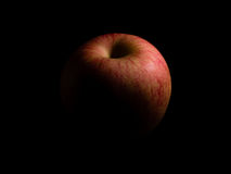Una mela Immagine Stock