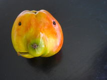 Una mela con un piccolo difetto immagini stock libere da diritti