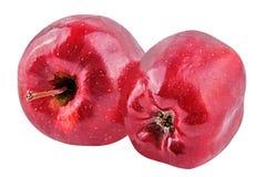 una mela di due rossi isolata su fondo bianco Fotografia Stock