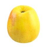Una mela gialla isolata su fondo bianco Fotografie Stock