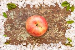 Una mela rossa sulla tavola di legno fotografia stock libera da diritti