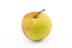 Una mela su fondo bianco isolato Fotografia Stock Libera da Diritti
