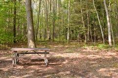 Una mesa de picnic en el bosque Fotografía de archivo