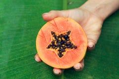 Una metà della papaia in una mano Fotografia Stock Libera da Diritti