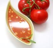 Una minestra fresca dei pomodori Fotografia Stock