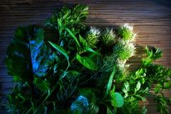una miscela delle erbe Fotografie Stock