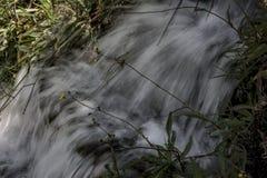 Una molla di acqua in Velez Benaudalla 3 Immagini Stock Libere da Diritti