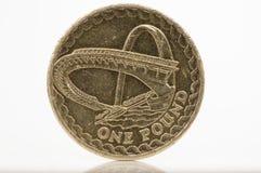Una moneta di libbra Fotografia Stock