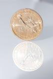 Una moneta dorata del dollaro Immagine Stock
