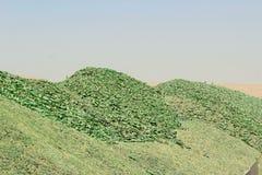 Una montaña de pequeños fragmentos del vidrio verde Foto de archivo