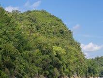 Una montaña grande llenó de los árboles con el lo del fondo del cielo azul imagenes de archivo