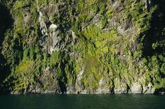 Una montaña rocosa que sube derecho del mar Foto de archivo libre de regalías