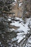 Una montagna Creekbed 4 Immagini Stock