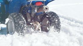 Una moto de nieve que monta del hombre del bosque A del invierno y superación de la nieve almacen de metraje de vídeo