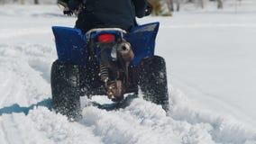 Una moto de nieve que monta de la persona del bosque A del invierno y superación de la nieve almacen de metraje de vídeo