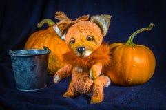 Una muñeca del ` s del zorro-granjero, al lado de un cubo y de calabazas grandes Fotografía de archivo libre de regalías