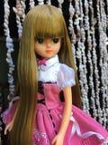 Una muñeca hermosa de LICCA imagen de archivo libre de regalías