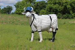 Una mucca che porta un'uniforme di baseball Fotografia Stock