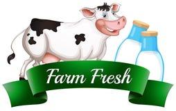 Una mucca con un'etichetta fresca dell'azienda agricola Fotografie Stock Libere da Diritti